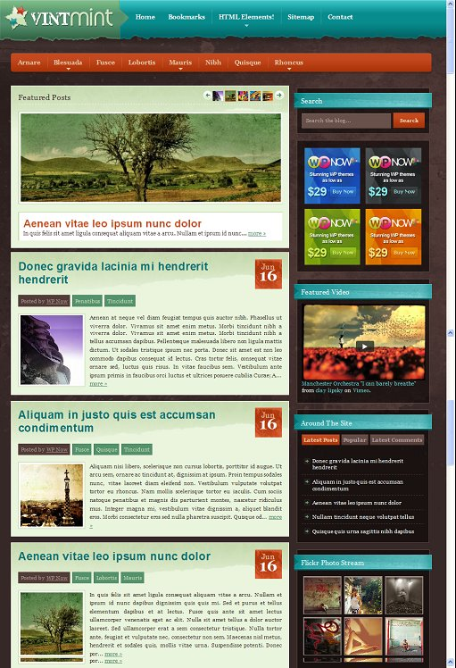 VintMint Premium WordPress Theme