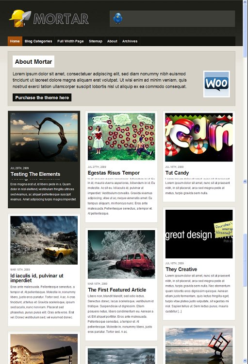 WooThemes Mortar WordPress Theme