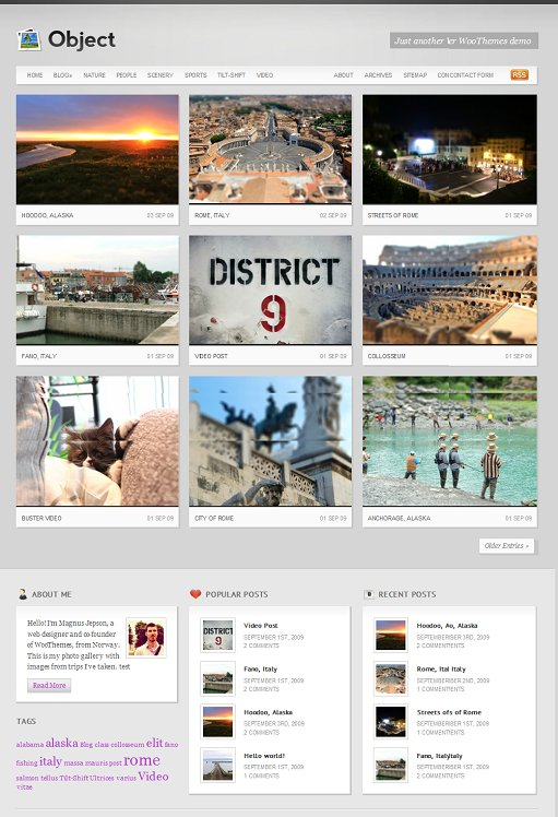 WooThemes Object WordPress Theme