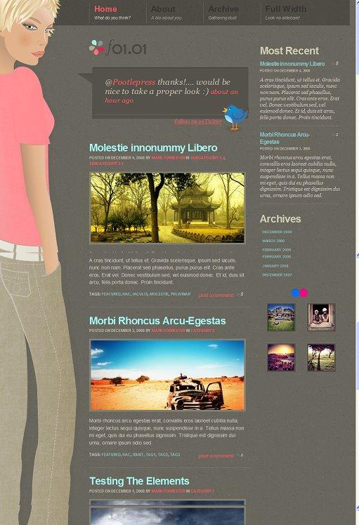 WooThemes F0101 Premium WordPress Theme