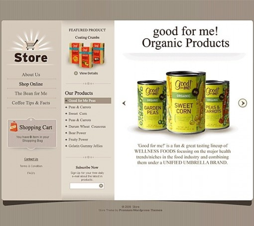 Store e-commerce theme