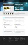 WooThemes Optimize – Perfect Business WordPress Theme