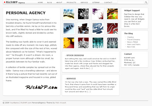 personal agency theme