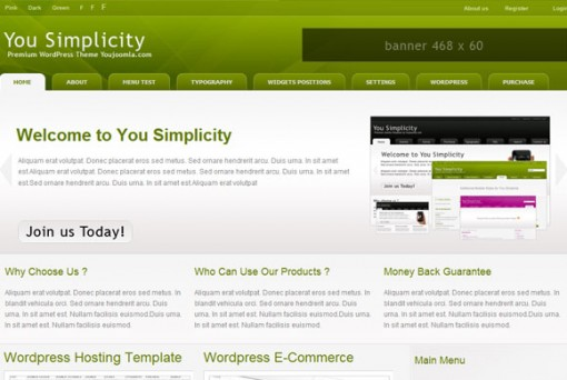 yousimplicity wordpress theme