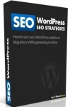 WordPress SEO Strategies Guide Ebook Review