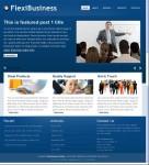 FlexiBusiness WordPress Theme