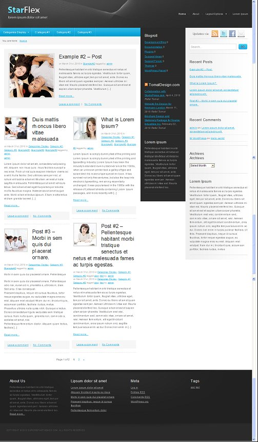 StarFlex WordPress Theme