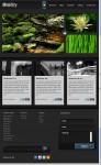 iPad User WordPress Theme : ThemeForest Mobility Theme