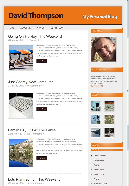 Zarina WordPress theme