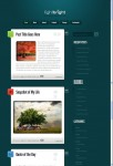 Elegant Themes Light Bright WordPress Theme