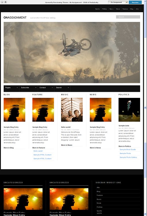 On Assignment WordPress theme