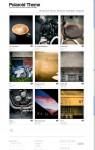 Polaroid Theme – Showcase WordPress Theme for Artists, Ideas