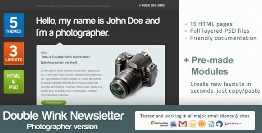 Double Wink Newsletterds Email Template