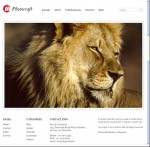 Photocraft WordPress Theme For Photographers ShowCase Online