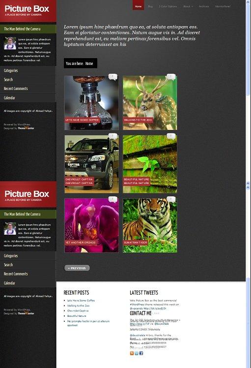 Picture Box WordPress Theme