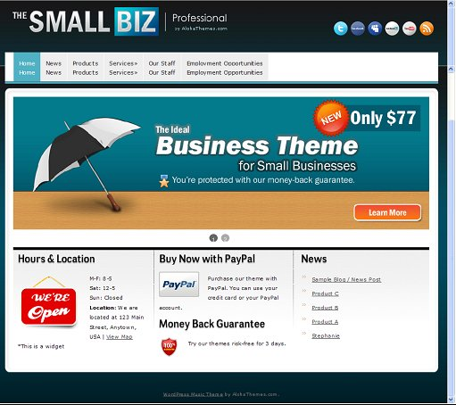 Aloha Themes The Small Biz Business WordPress Theme