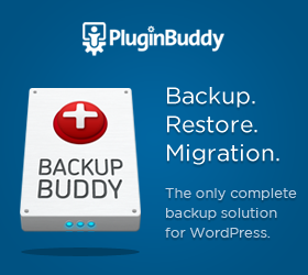 Backup Buddy Coupon Code 2013