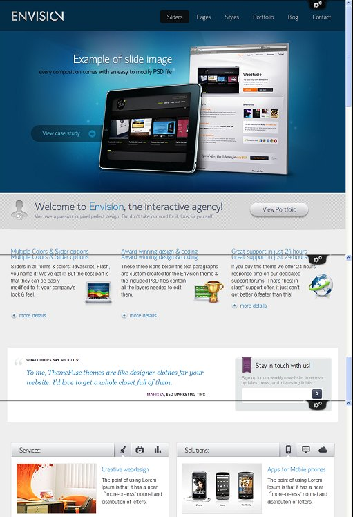 ThemeFuse Envision WordPress Theme