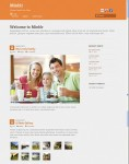 Themify Minblr Tumblr-like Theme For WordPress