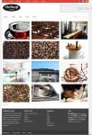 RichWP RichVISUAL WordPress Showcase Theme