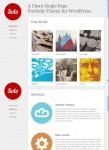 Theme Trust Solo WordPress One Page Portfolio theme