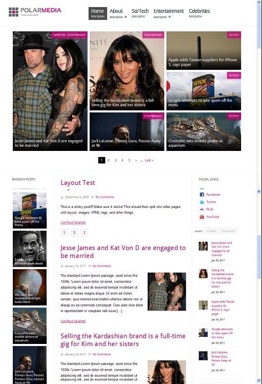 BizzThemes PolarMedia WordPress Theme