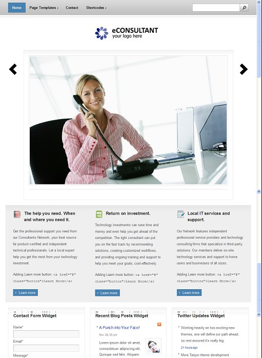 BizzThemes eConsultant WordPress Theme