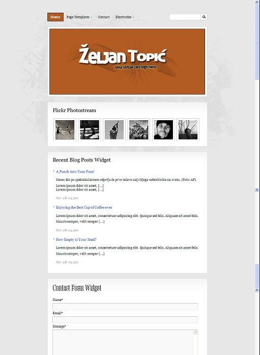 BizzThemes BizzCard WordPress Business Card Theme