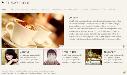 Organic Studio WordPress Theme