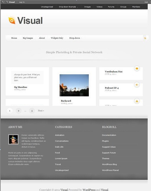 DevPress Visual WordPress Theme