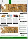 Chimera Tomasso WordPress News Style Blog Theme