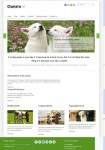 InkThemes Cloriato WordPress Theme For 12 Different Niche
