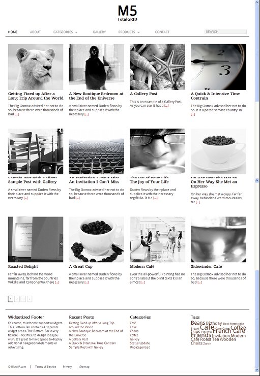 RichWP TotalGRID WordPress GRID Theme