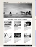 Viva Themes Crescendo Minimalist Theme For WordPress Review