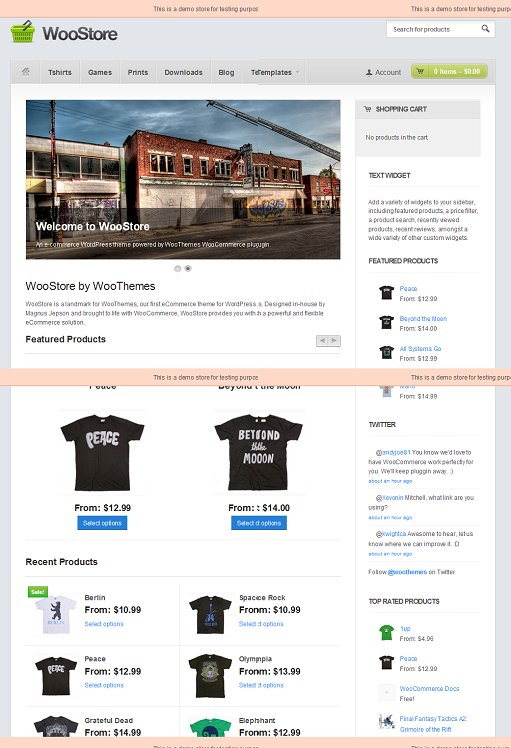 WooThemes WooStore eCommerce Theme For WordPress