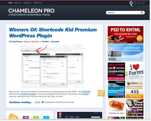 Chameleon Pro Responsive Personal WordPress Theme From FrogsThemes