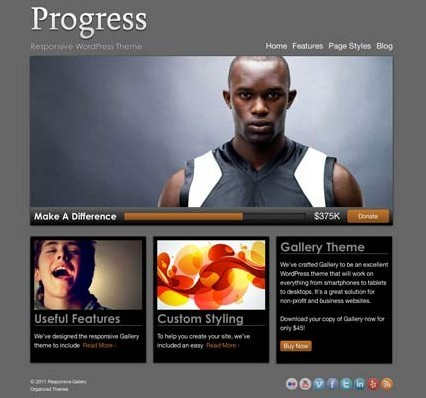 Organized Progress Responsive WordPress Theme For Non-profits