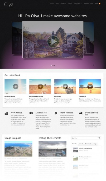 WooThemes Olya WordPress Business Portfolio Theme