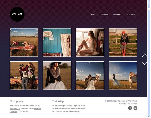 Viva Themes Collage WordPress theme