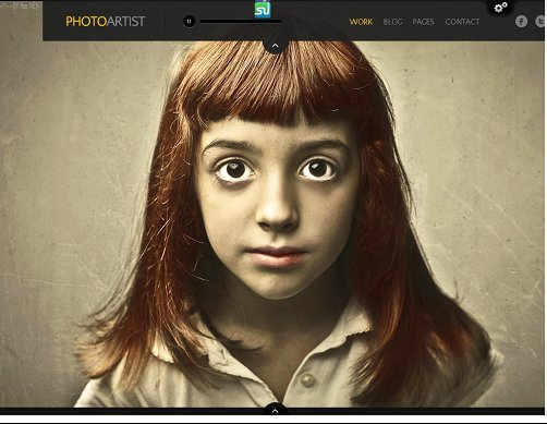 ThemeFuse PhotoArtist Photo Showcase WordPress Theme