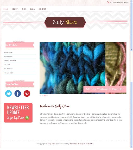 BluChic Sally Store Responsive eCommerce WordPress Theme