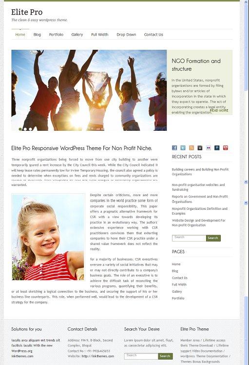 InkThemes Elite Pro Responsive WordPress Theme