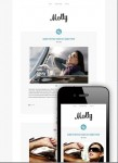 CSSIgniter Molly Responsive WordPress Theme For Tumblr-Blogging Sites