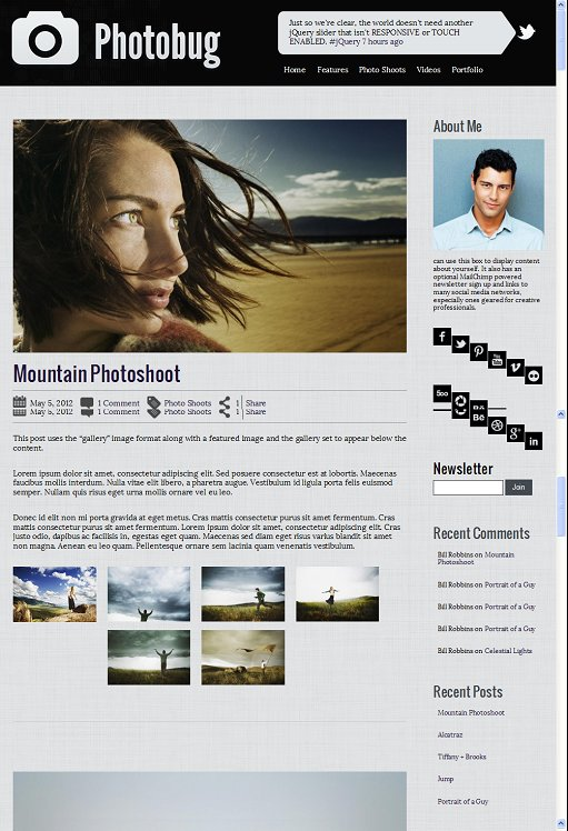 Organized Themes Photobug Responsive WordPress Theme for Photographers