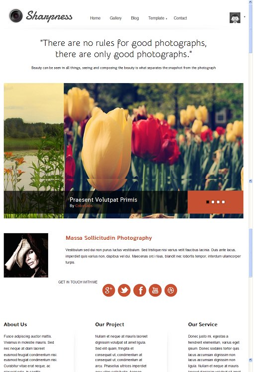 Colorlabs Sharpness Photoblog Child WordPress Theme For Backbone Framework