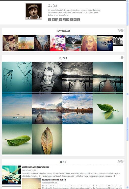 Colorlabs Persona Social Media WordPress Child Theme For Backbone Framework