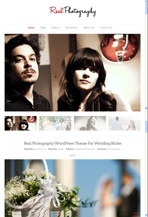 InkThemes Real Photography Responsive WordPress Theme Download