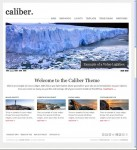 Caliber Organization Business WordPress Theme By Theme Weaver
