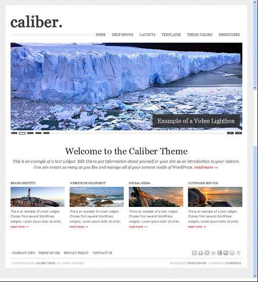 Caliber Organization Business WordPress Theme By Theme Weaver
