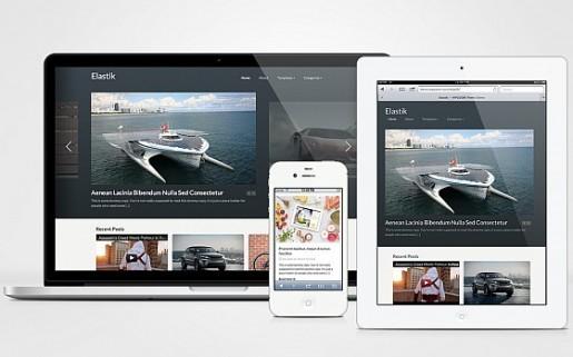 WPZOOM Elastik - Pinterest-like Theme For WordPress